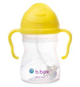 507_lemon_sippy_cup_01_cd73947c-cf2f-4839-baa0-363d45c5d796_x1024